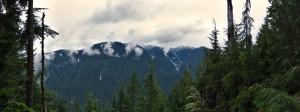 View from Lynn Peak