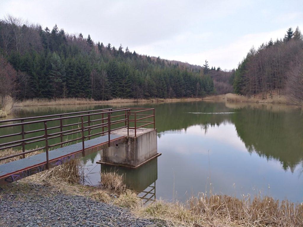 Zlonický rybník